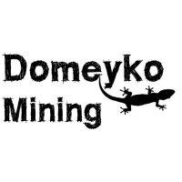 logo_domeyko mining